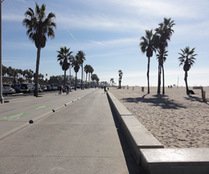 Venice Beach is also where the freakish and the fashionable rub elbows.